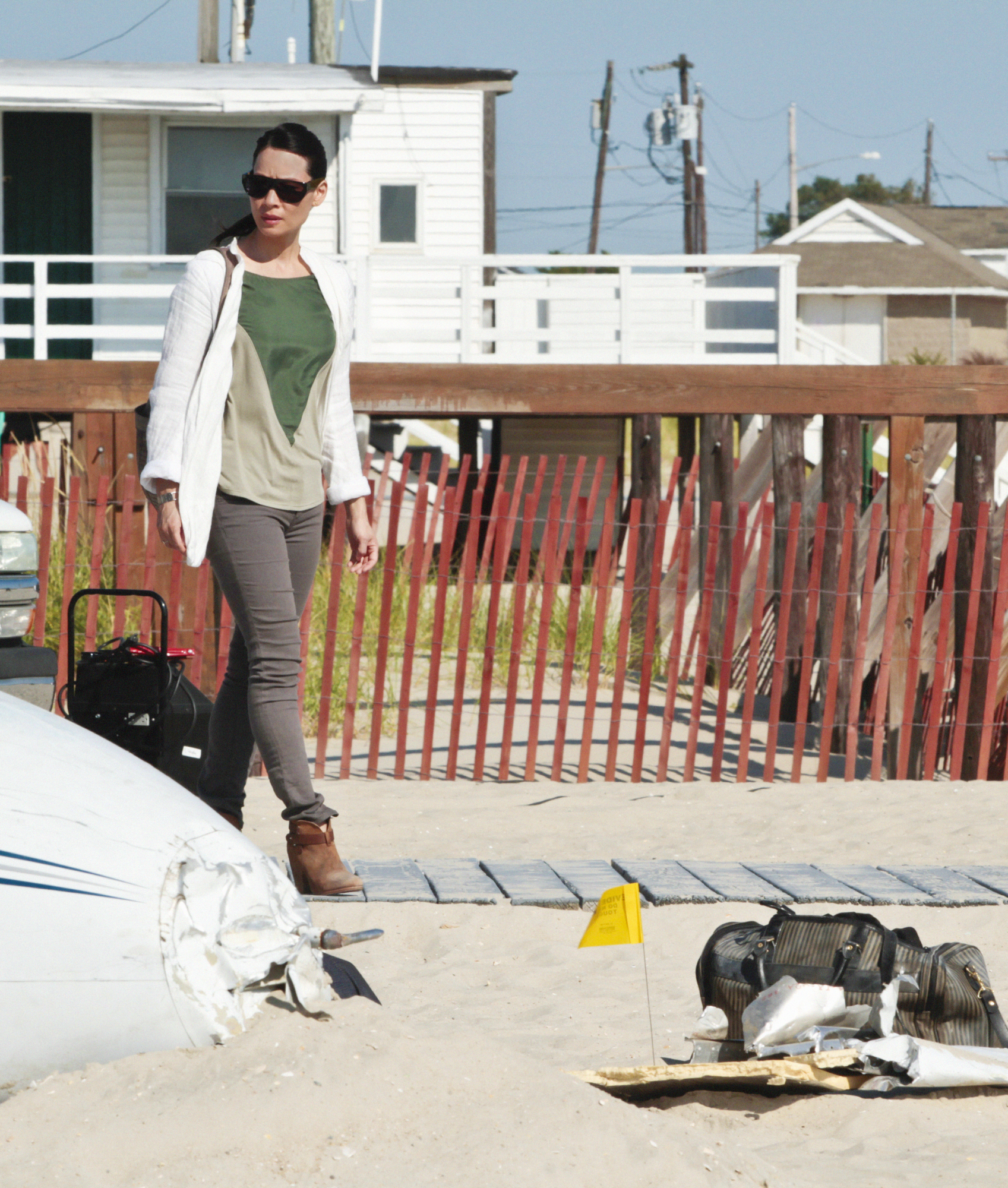 Watson Investigates On the Beach