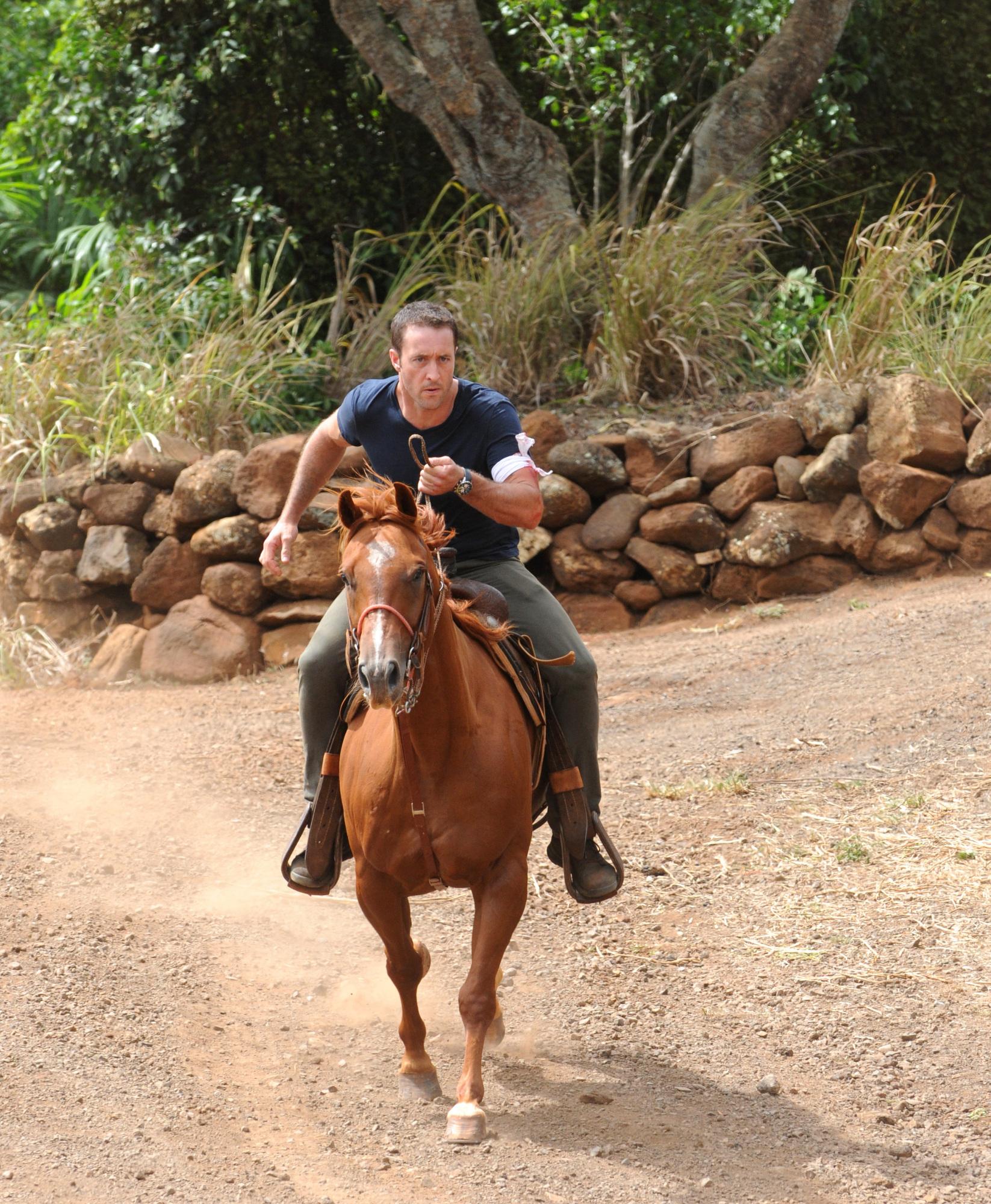 Horseback in