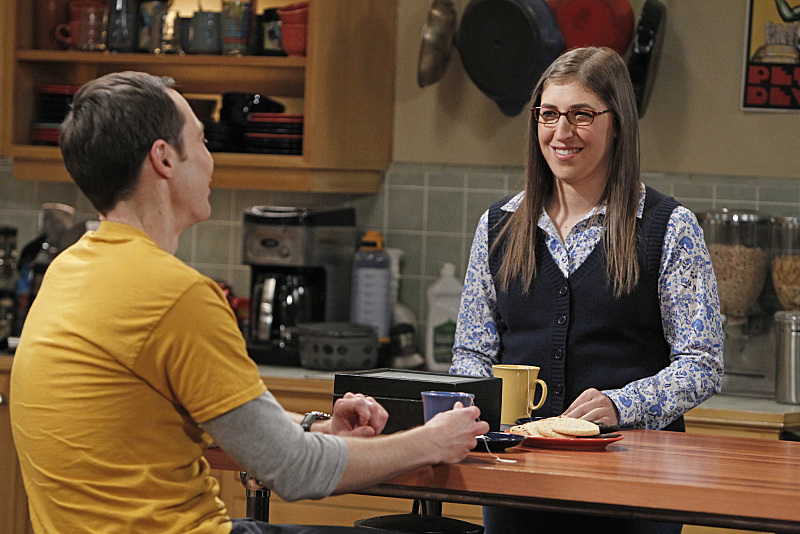 The real scientist on <i>The Big Bang Theory</i>