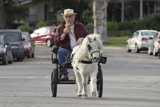 John takes his mini horse for a ride.