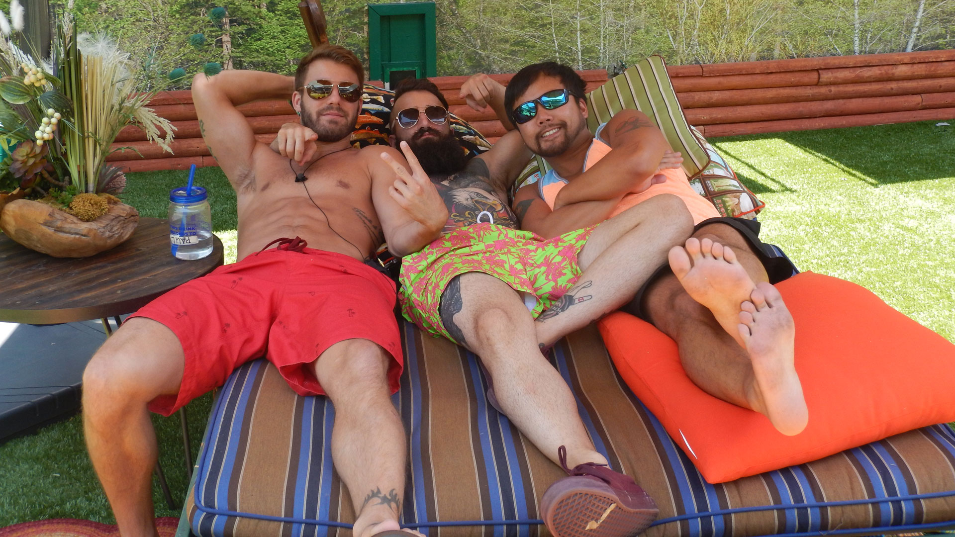 Paulie, Paul, and James lounge on the chaise.