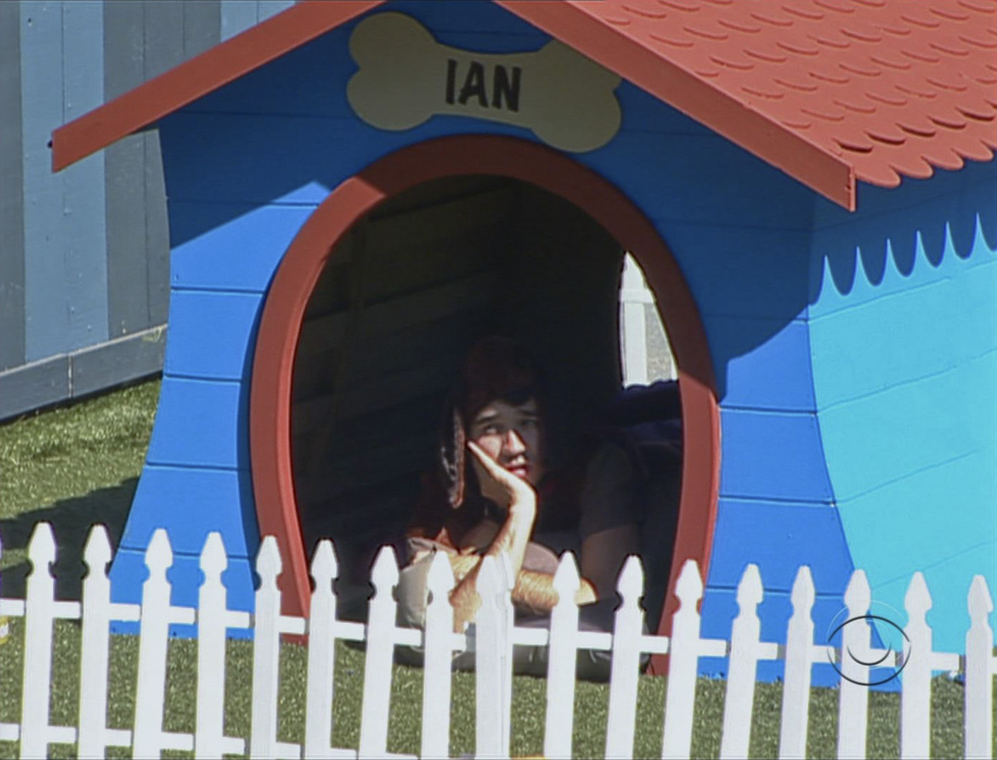 In the Doghouse