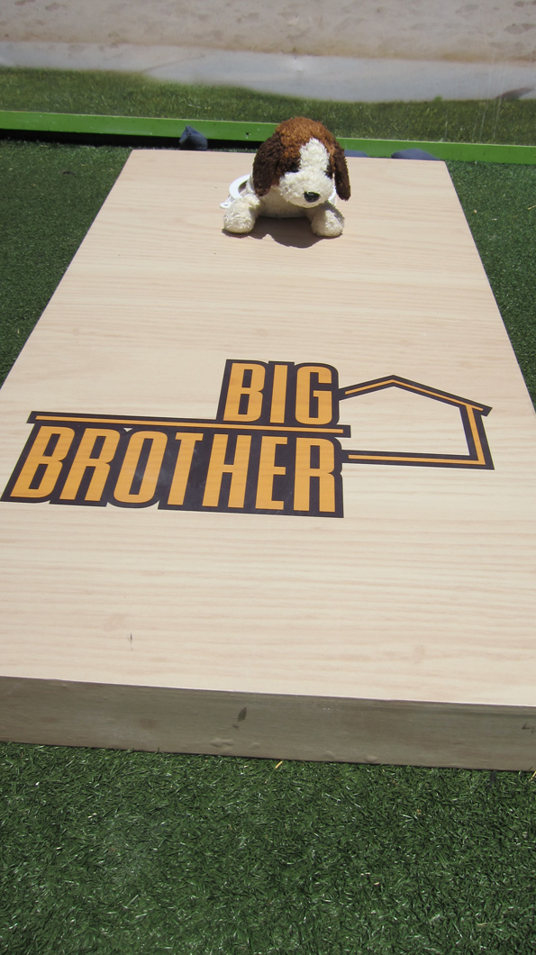 Big Brother Cornhole