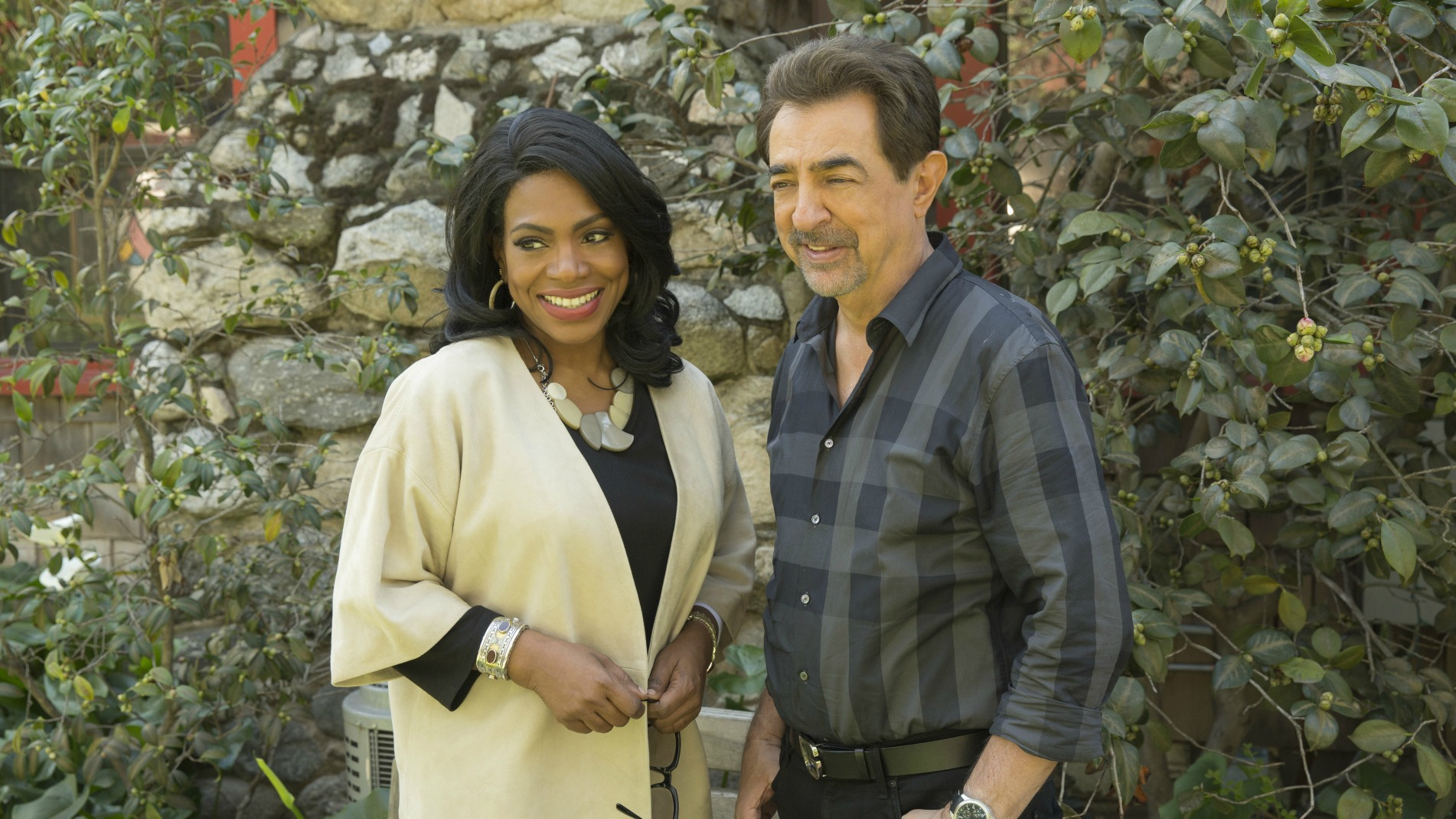 David Rossi rekindled a romance with his ex-wife.