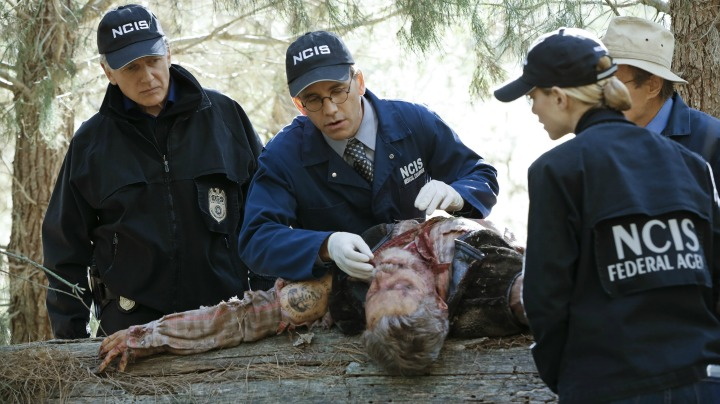 Mark Harmon as Leroy Jethro Gibbs, Brian Dietzen as Jimmy Palmer, David McCallum as Donald