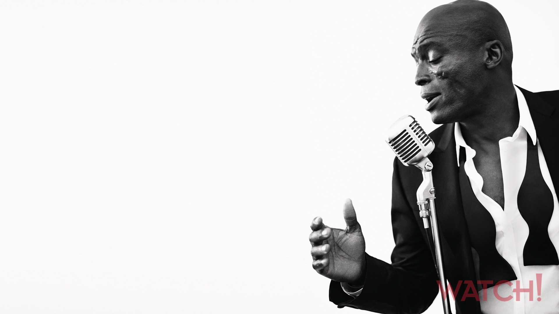 Seal takes the mic