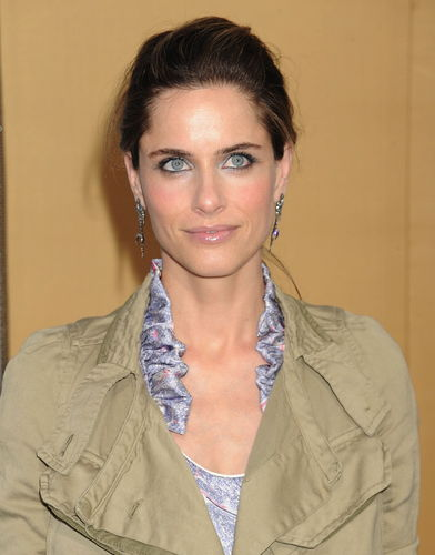 Amanda Peet on The Good Wife