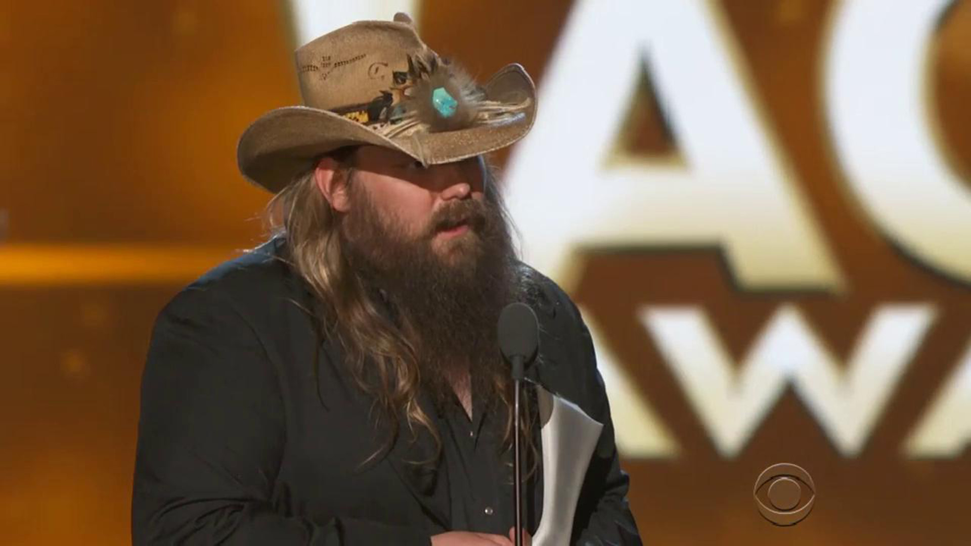 Chris Stapleton: Male Vocalist Of The Year
