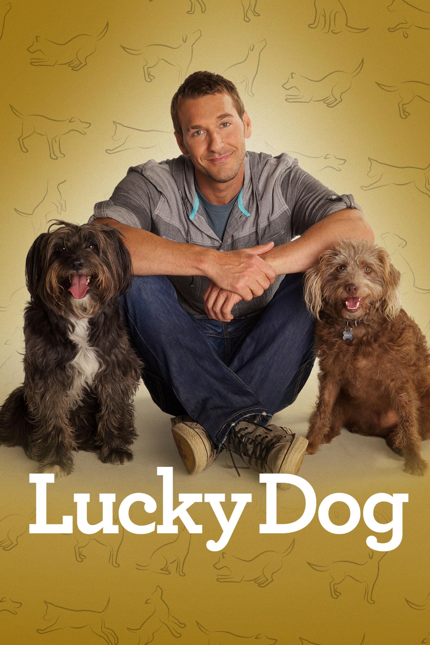 Lucky Dog