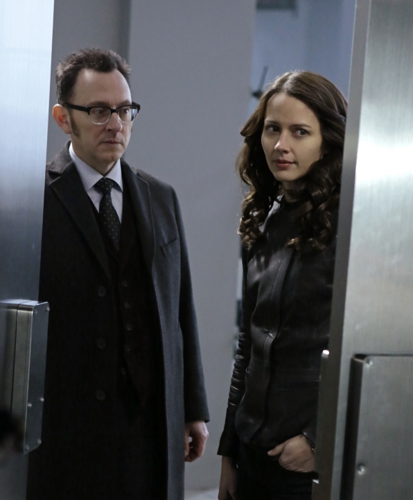 Finch and Root