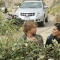 """Bush Banter in """"Descent"""" Episode 24 of Season 4"""