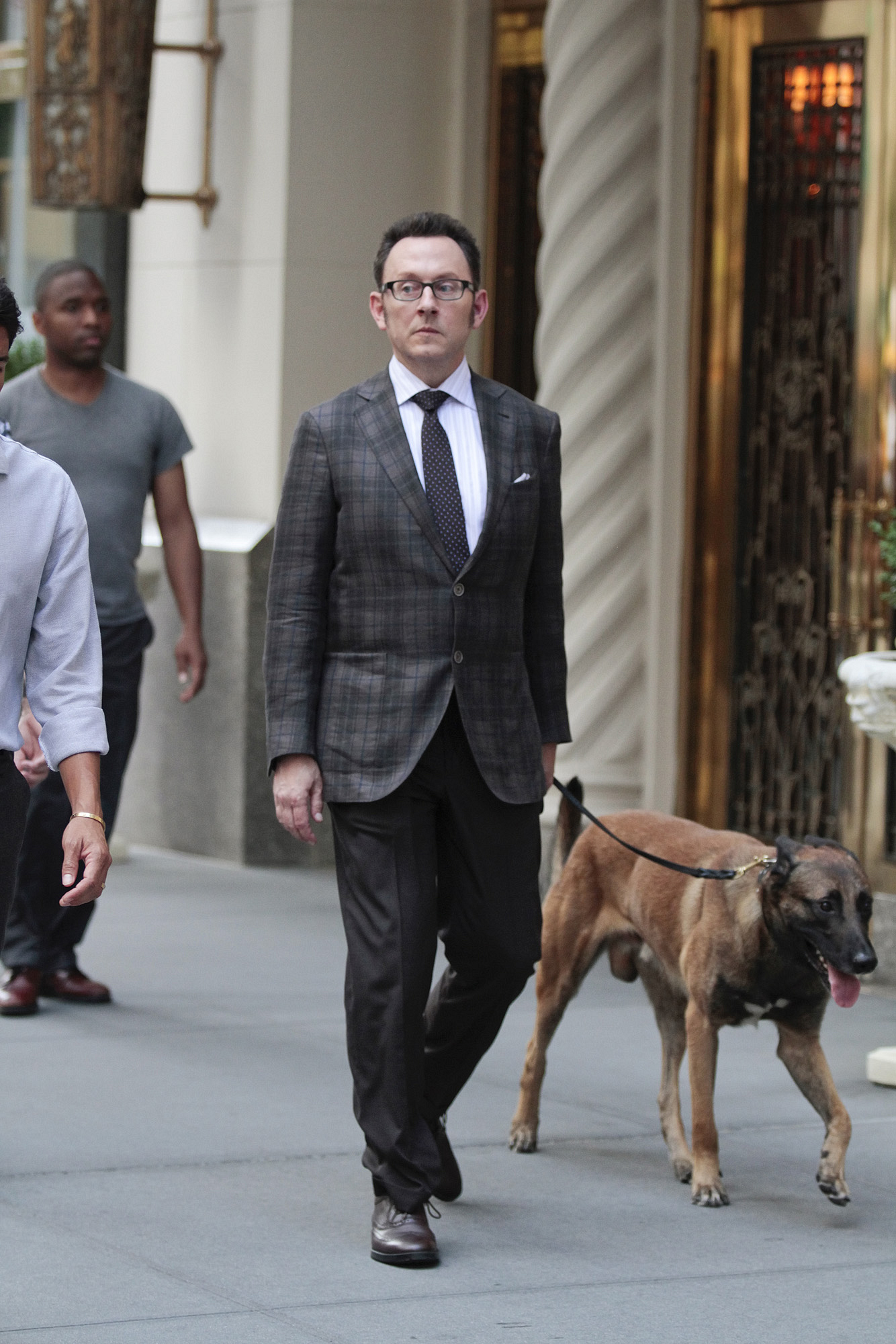 2. Bear (the dog) - Person of Interest