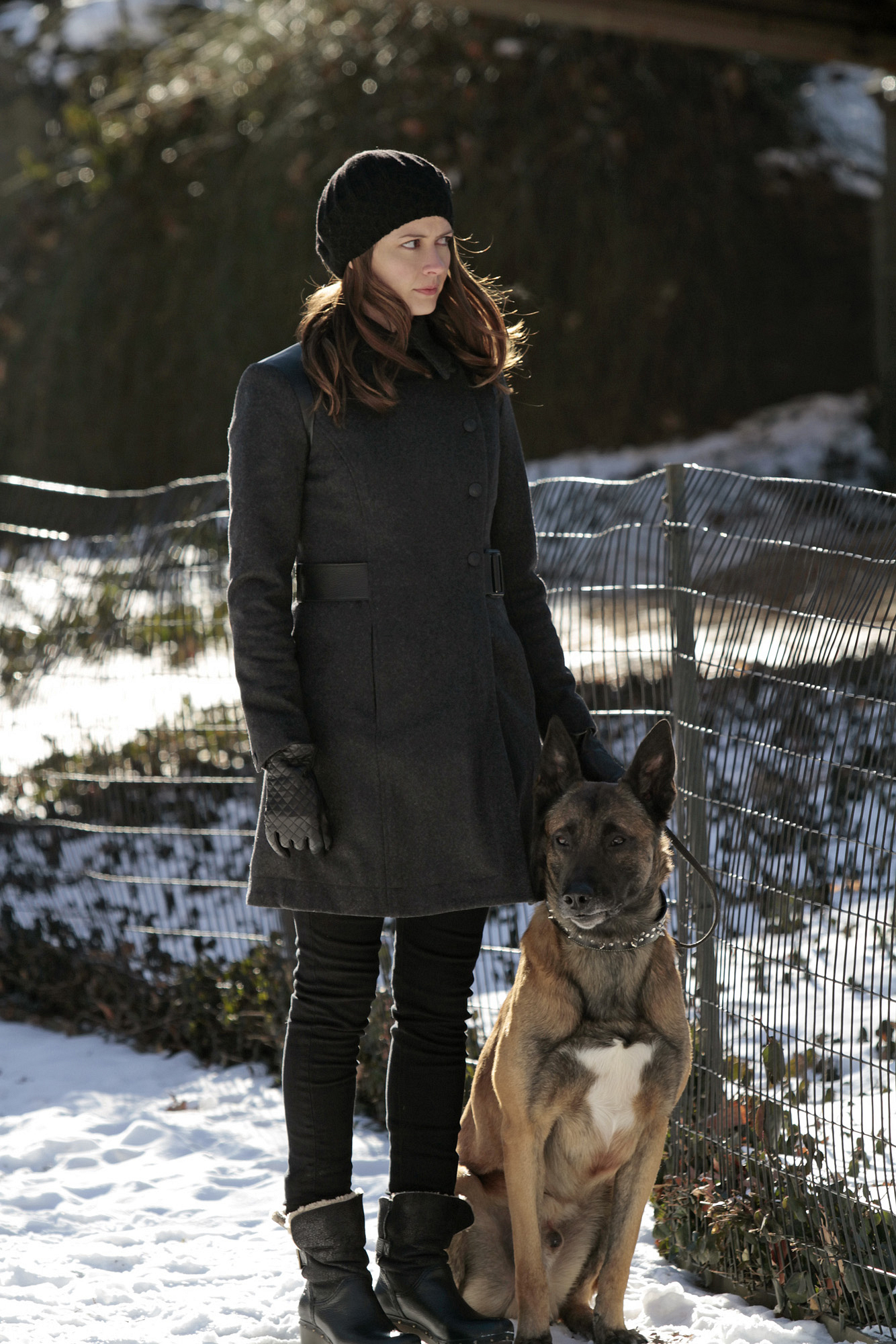 Root Walks Bear S3 E18