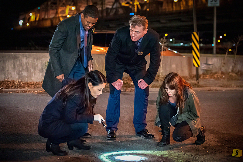 Captain Gregson and Detective Bell search for a murderer who took out an officer.