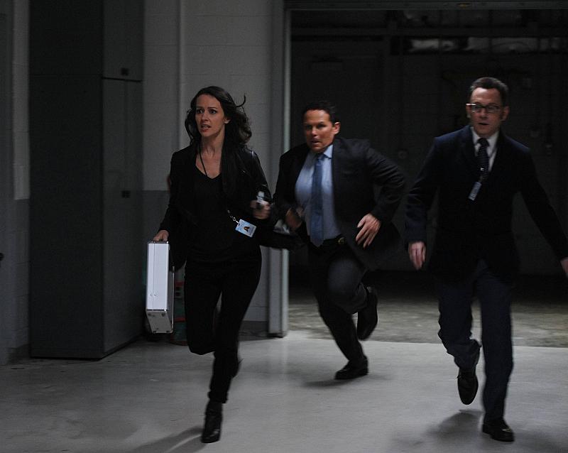 Run, Team, Run