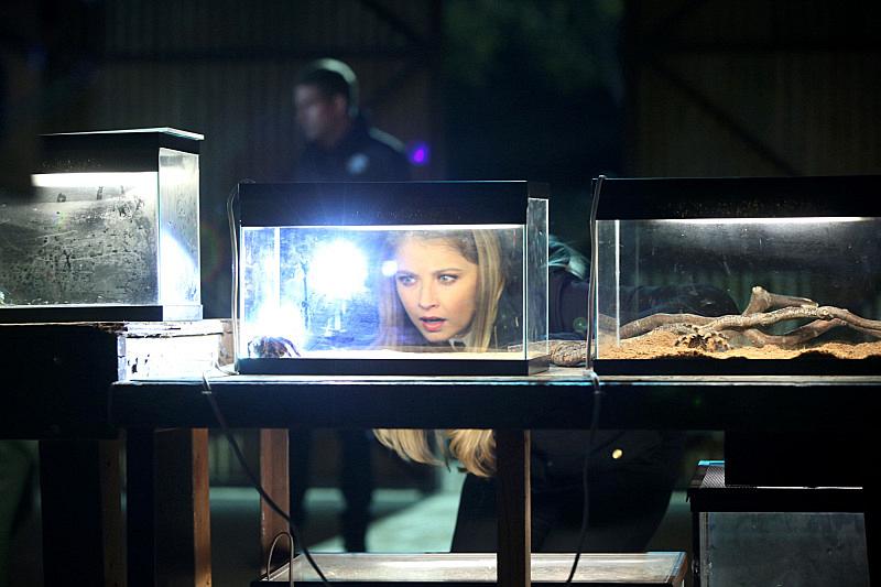 """Under My Skin"" - CSI S15 E17"