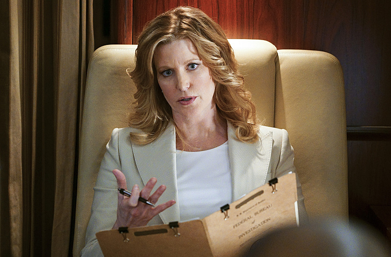 "Anna Gunn Guest Stars in ""Beyond Borders"" S10 E19"