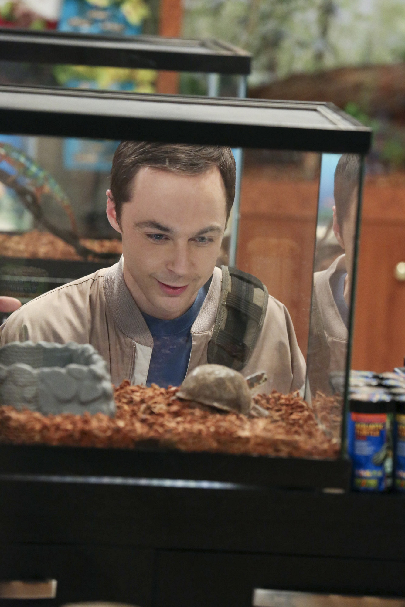 Sheldon eyes an animal