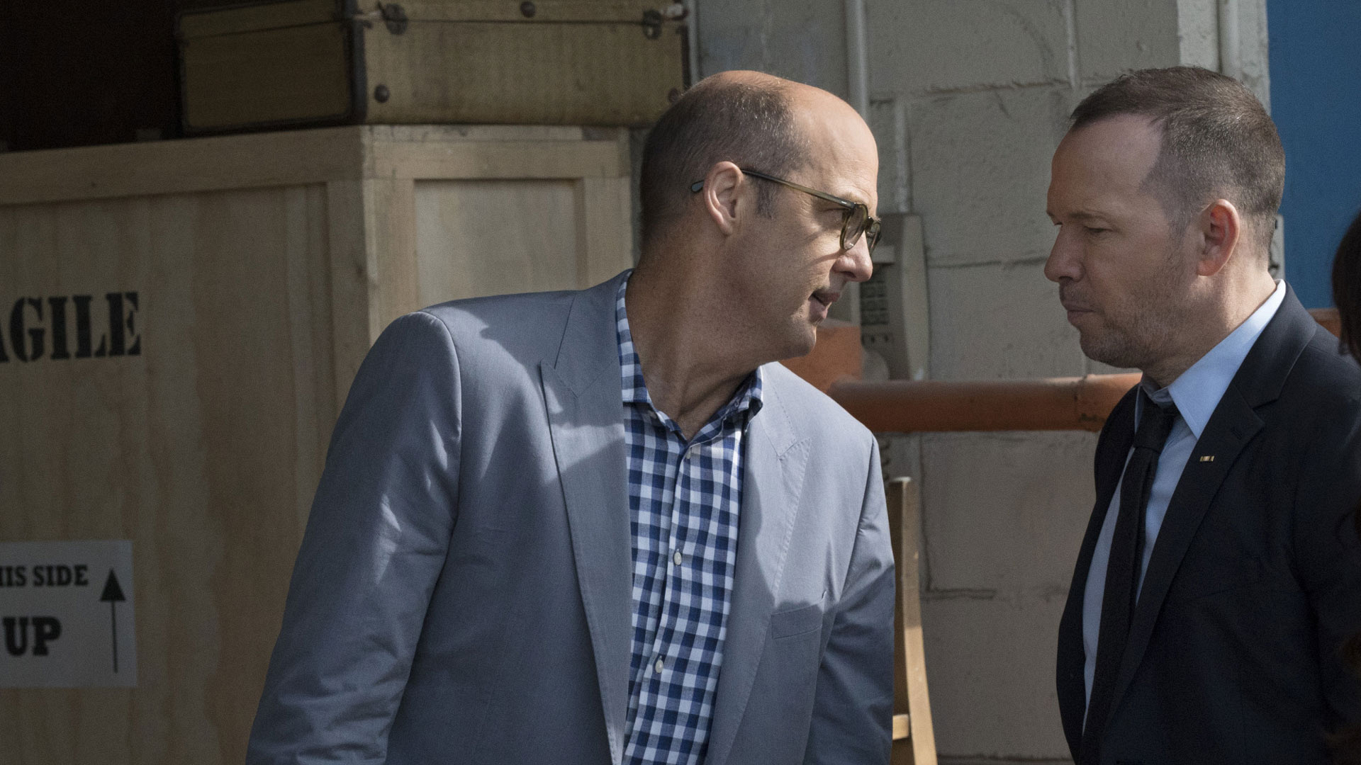 Anthony Edwards as Owen Cairo and Donnie Wahlberg as Danny Reagan