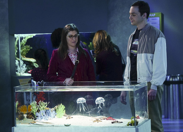Amy and Sheldon admire a pair of jellyfish at the acquarium