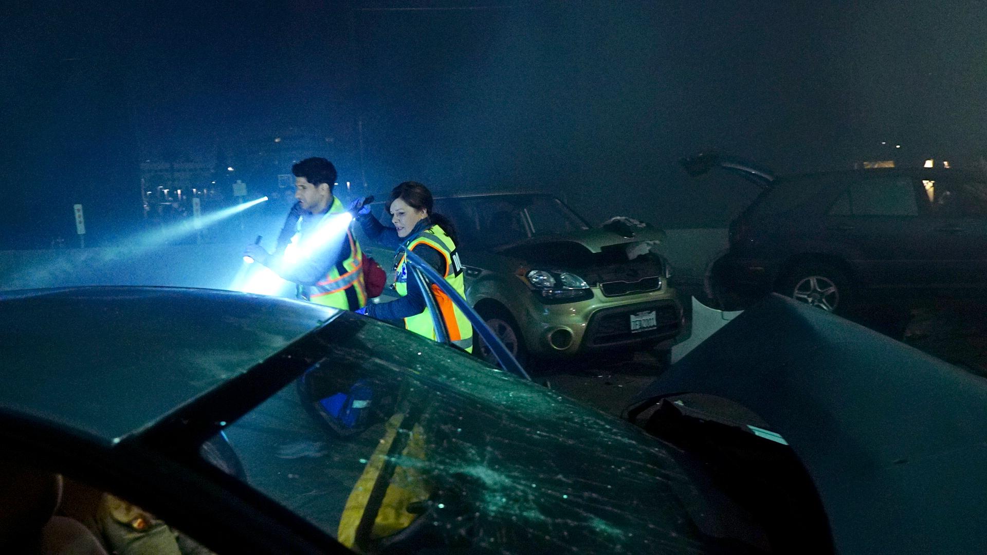 Raza Jaffrey as Dr. Neal Hudson and Marcia Gay Harden as Dr. Leanne Rorish