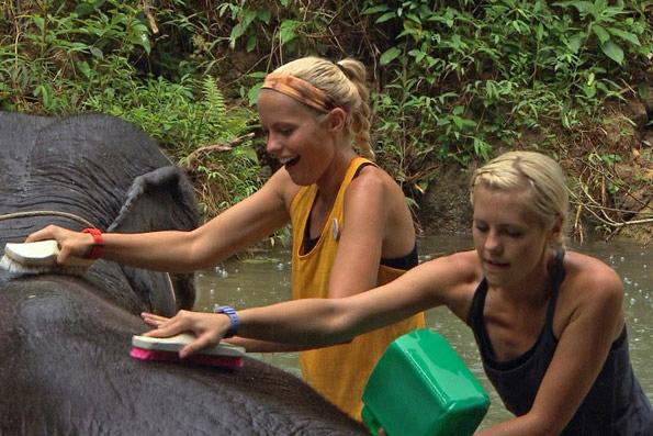 Liz and Marie Wash An Elephant in Bangkok, Thailand