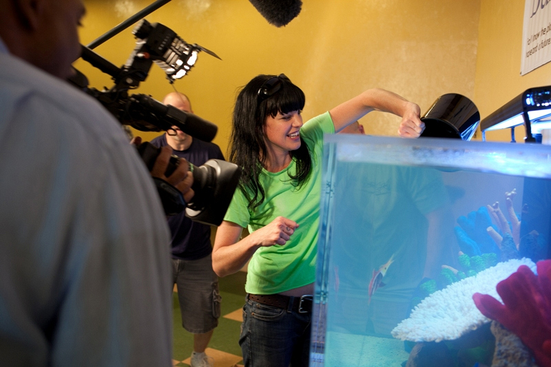 Pauley Perrette drops fish into an aquarium