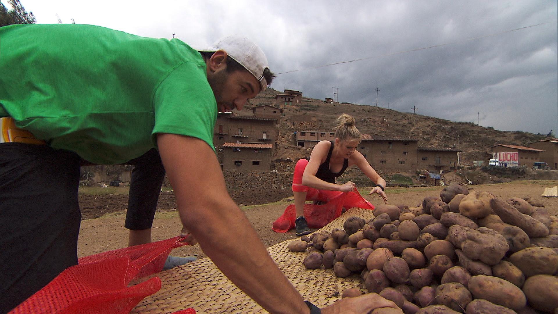 A potato challenge