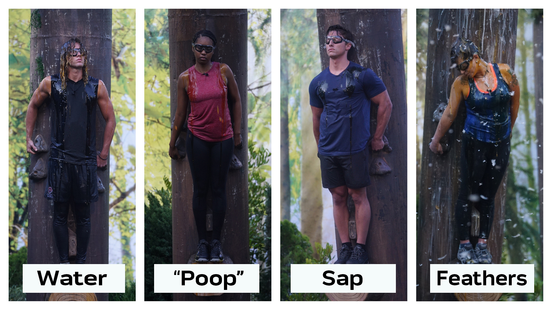 "What was the first thing to be dumped on the Houseguests in the ""Out On A Limb"" HOH endurance competition?"
