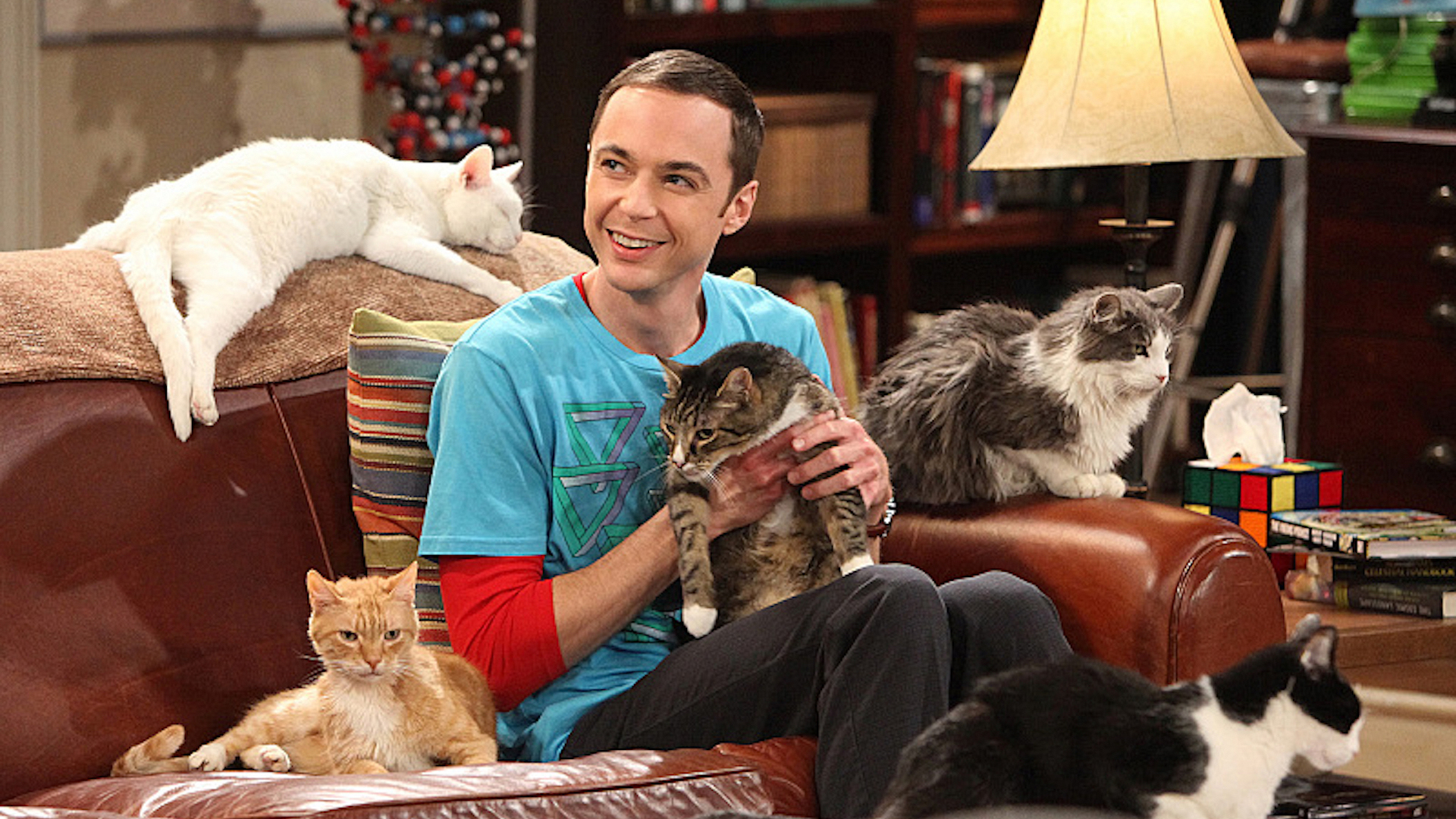 Though Sheldon is more of a cat person, Jim Parsons has two dogs.