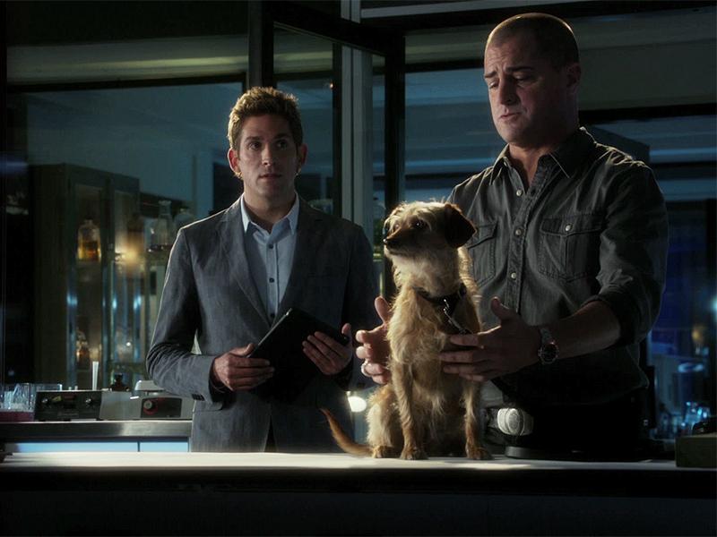 9. Stokes' New Friend - CSI: Crime Scene Investigation