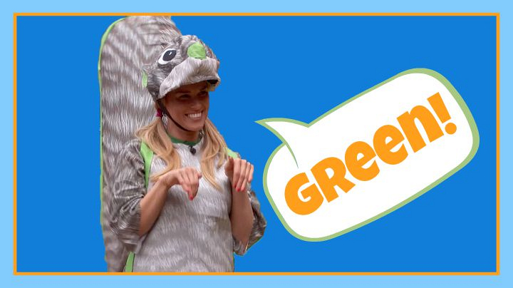 Question: What color was Shelli's squirrel costume during this week's POV competition?