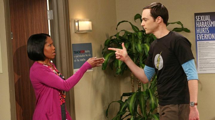 The Human Resourcer: Janine Davis (The Big Bang Theory)