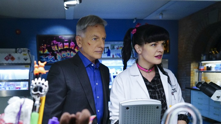 Abby shows Gibbs her findings.