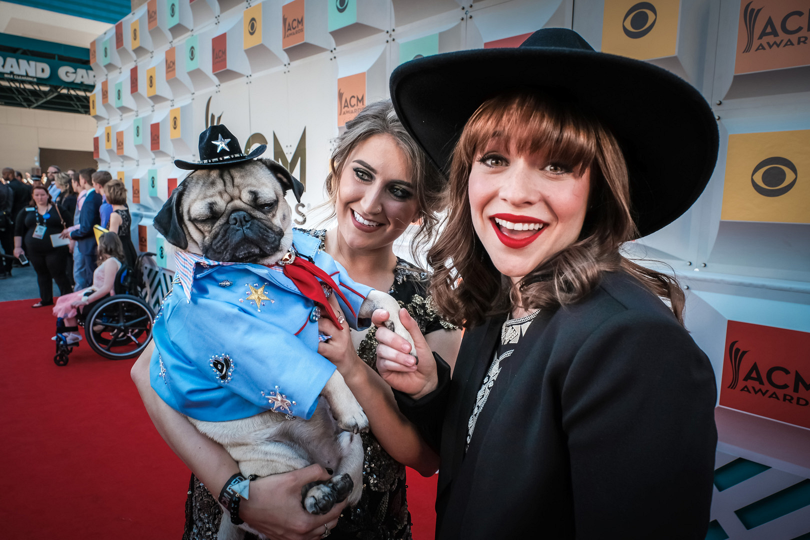 2016 ACMs: Doug The Pug and Renée Felice Smith