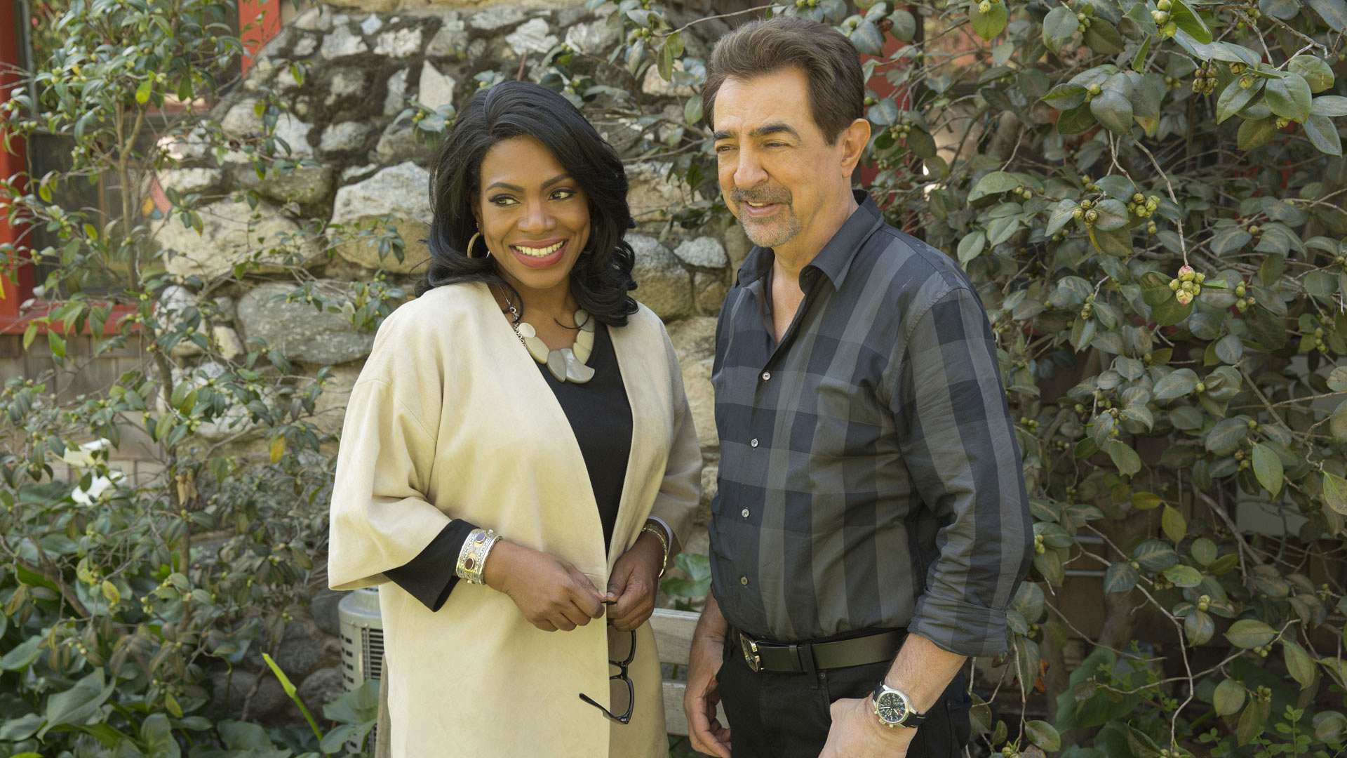 SSA David Rossi rekindled his relationship with his ex-wife on Criminal Minds.