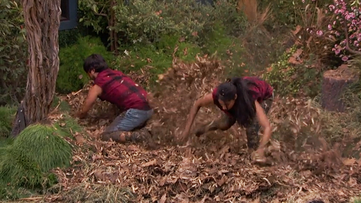 "Jackie and James dig through mulch (""Grunge BoB,"" BoB)"