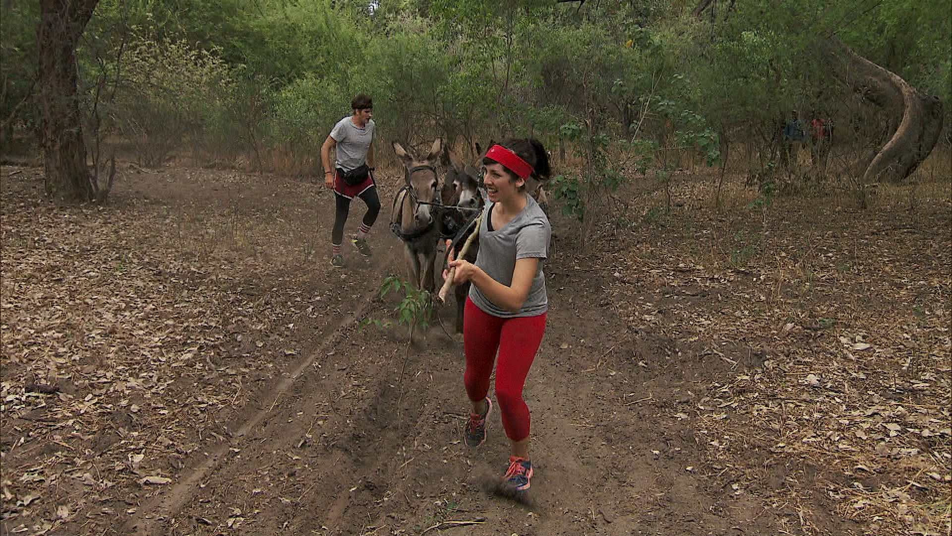 "Joey and Meghan in ""Be Safe and ""Don't Hit a Cow"" Episode 7 of Season 22"