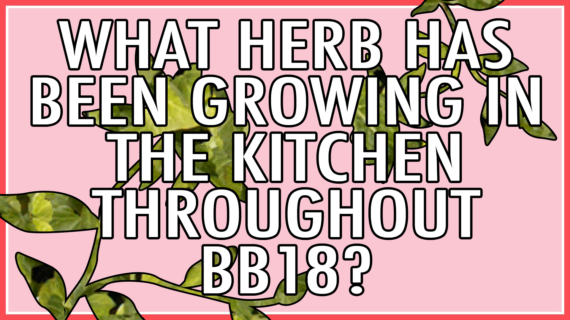 What herb has been growing in the kitchen throughout BB18?