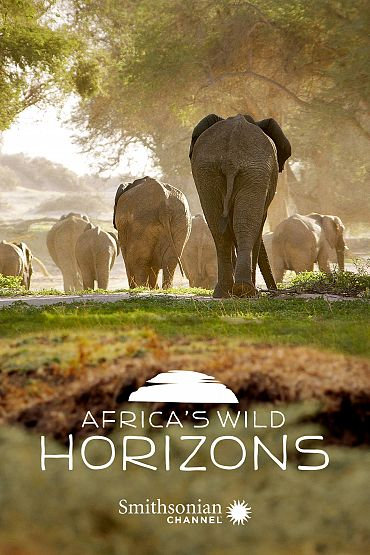 Africa's Wild Horizons