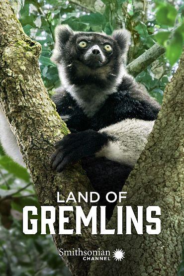 Land of Gremlins