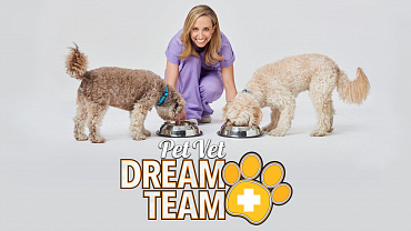 Pet Vet Dream Team