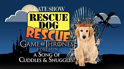 Emilia Clarke And Stephen Colbert Team Up For Game Of Thrones Edition Of Rescue Dog Rescue