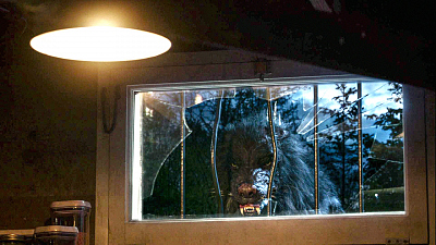 An Army Of Animal Hybrids Topple The Food Chain In The Season 3 Premiere Of Zoo