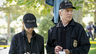 Which NCIS Should You Guest Star On?