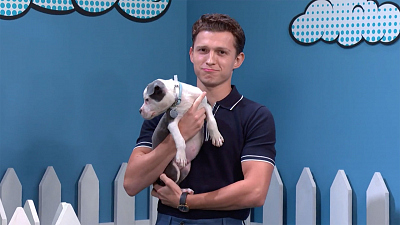 Tom Holland Joins Stephen Colbert For Rescue Dog Rescue: Superhero Edition